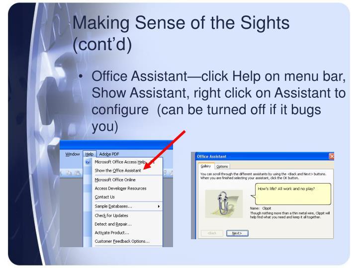 Making Sense of the Sights (cont'd)