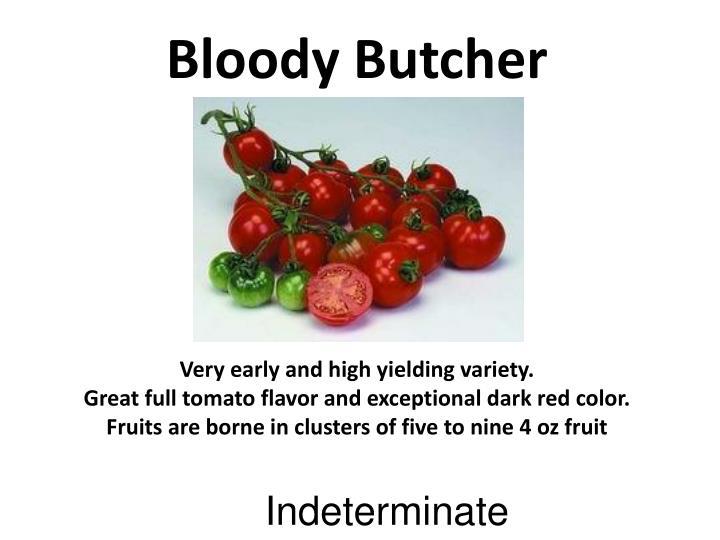 Bloody Butcher