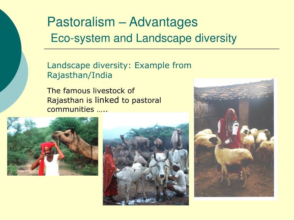 Pastoralism – Advantages