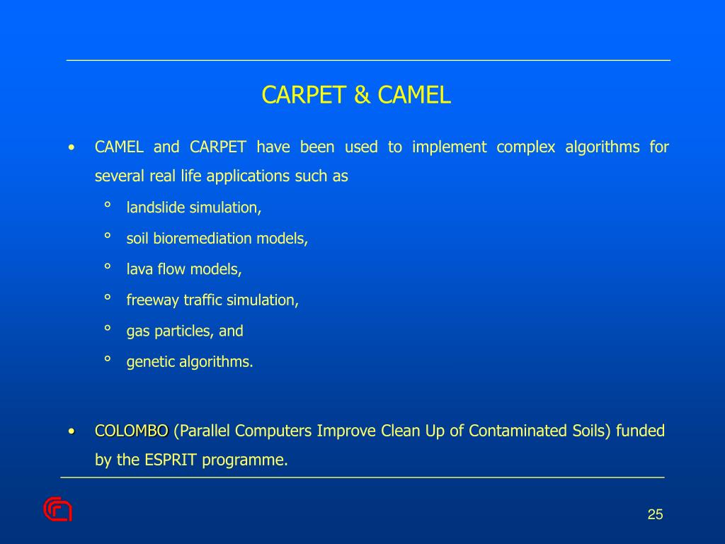 CARPET & CAMEL