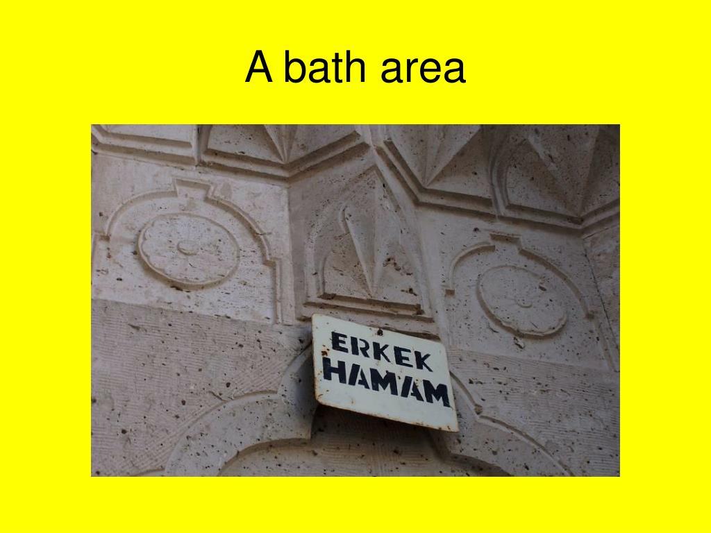A bath area