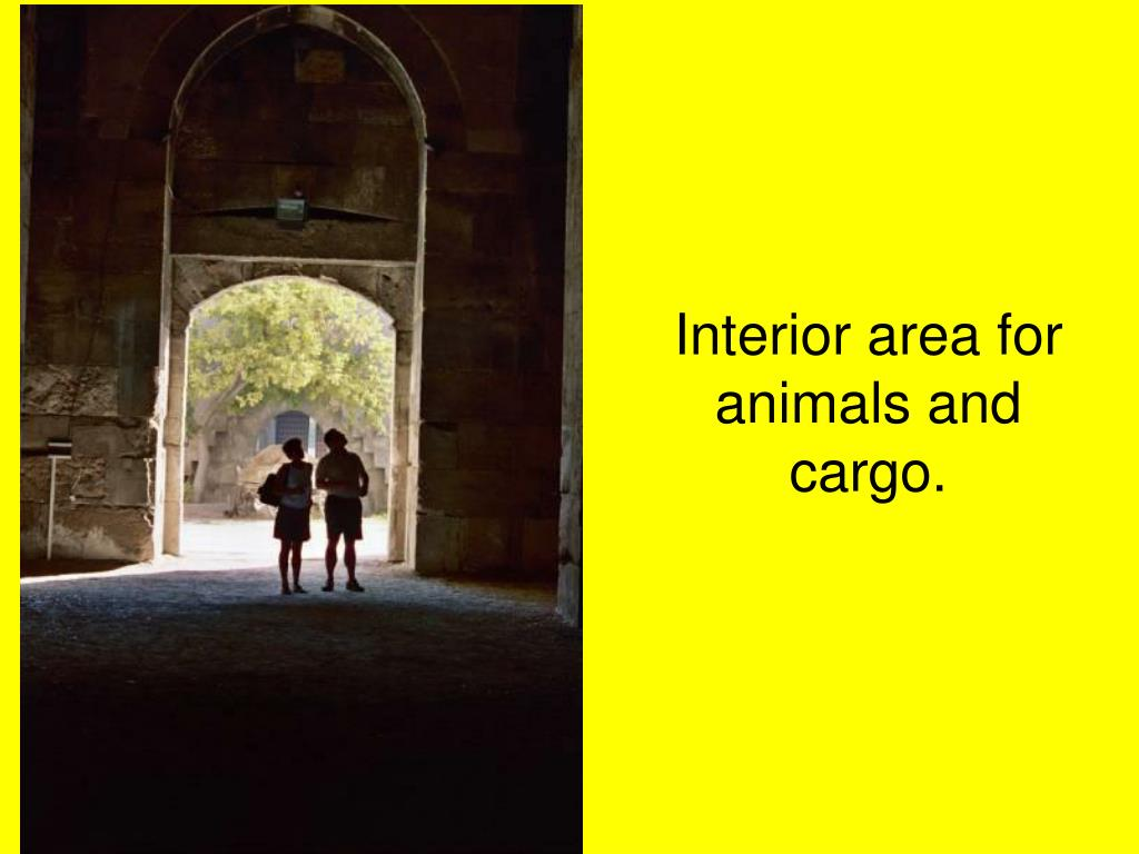 Interior area for animals and cargo.
