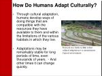 how do humans adapt culturally