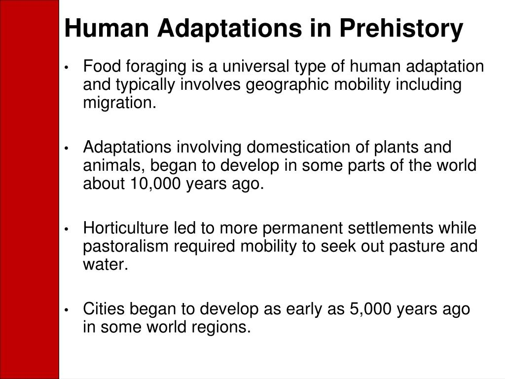 Human Adaptations in Prehistory