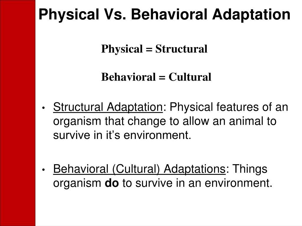 Physical Vs. Behavioral Adaptation