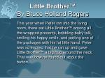 little brother by bruce holland rogers1