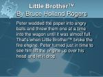 little brother by bruce holland rogers17