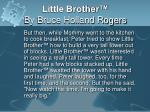 little brother by bruce holland rogers8