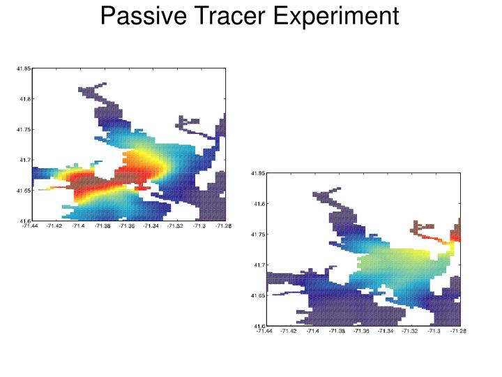Passive Tracer Experiment