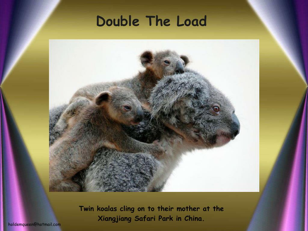 Double The Load
