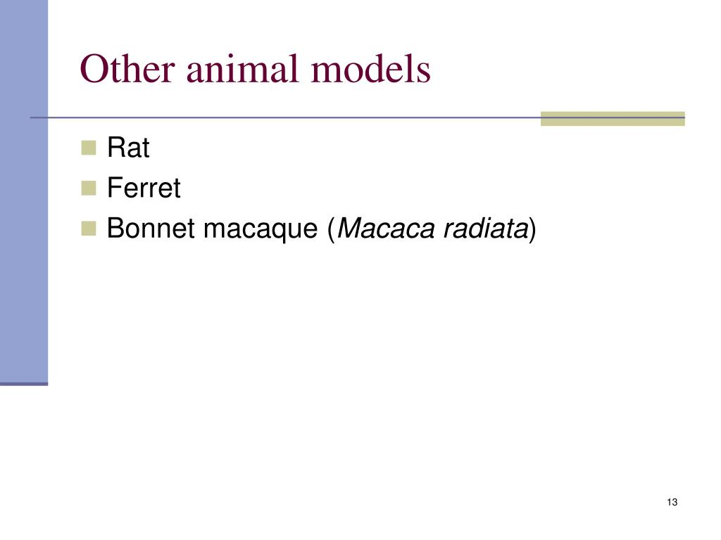 Other animal models