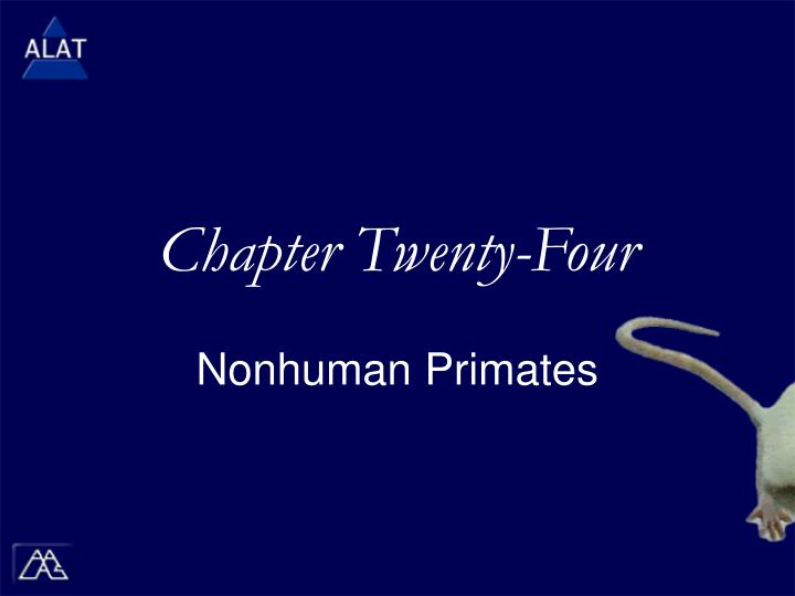 Chapter twenty four