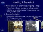 handling restraint ii
