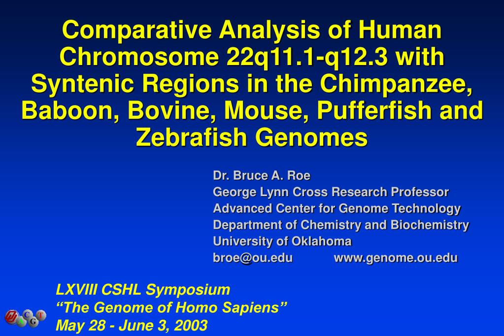 Comparative Analysis of Human Chromosome 22q11.1-q12.3 with Syntenic Regions in the Chimpanzee, Baboon, Bovine, Mouse, Pufferfish and Zebrafish Genomes