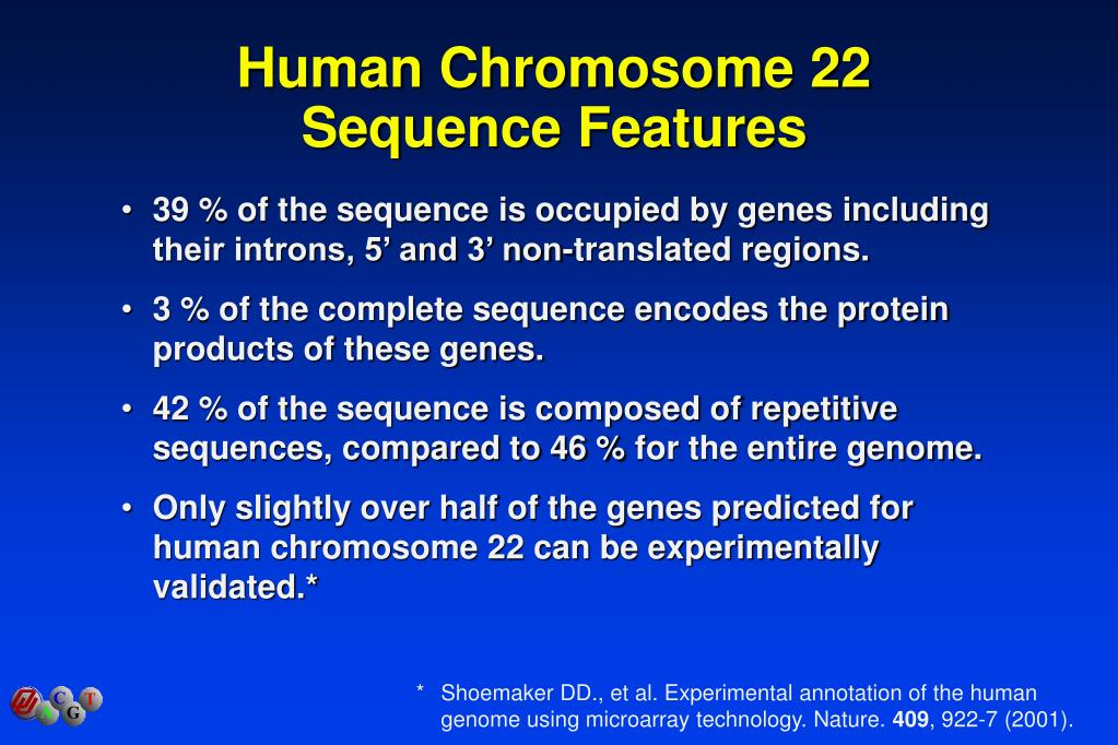 Human Chromosome 22 Sequence Features