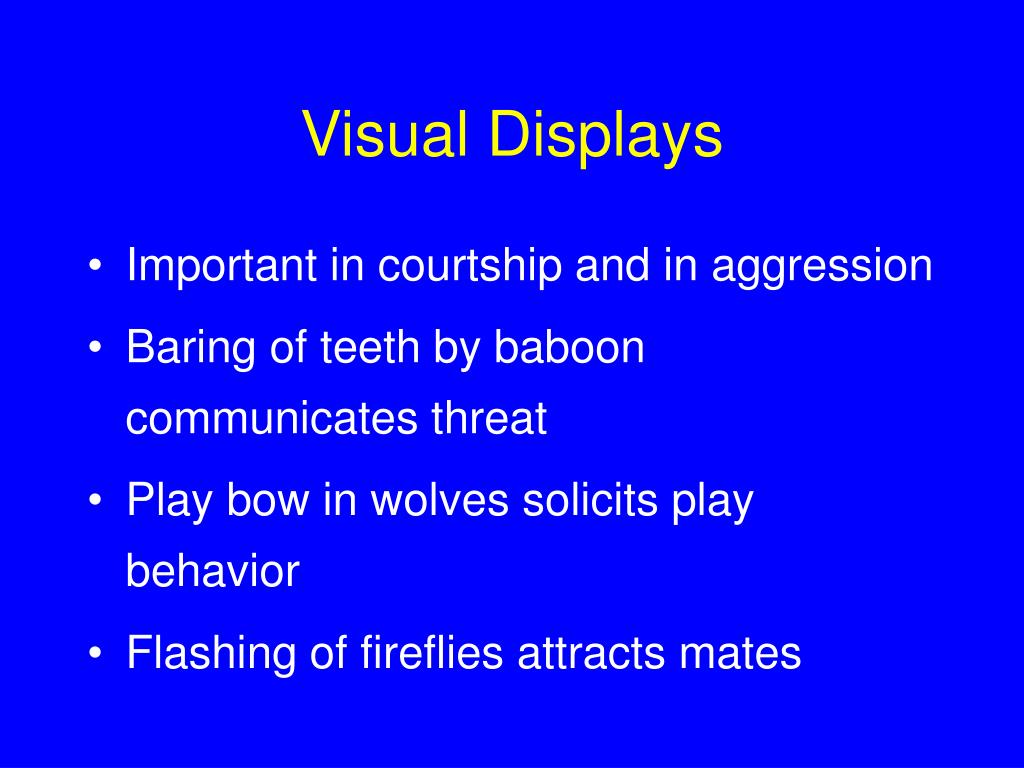 Visual Displays