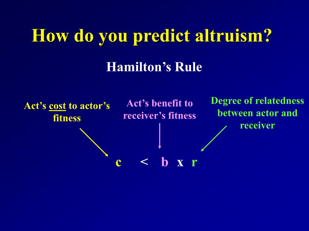 How do you predict altruism?