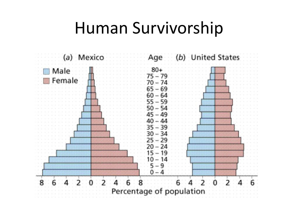 Human Survivorship