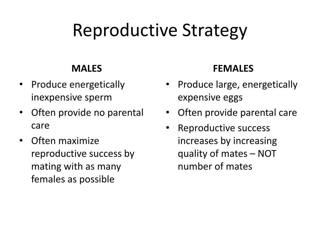Reproductive Strategy
