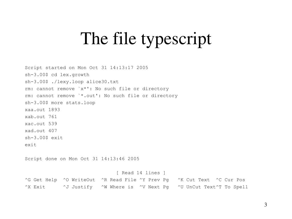 The file typescript