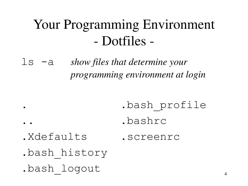 Your Programming Environment