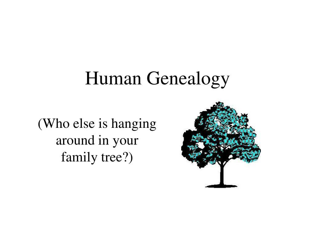 Human Genealogy