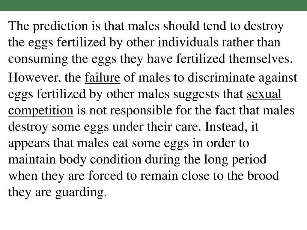 The prediction is that males should tend to destroy the eggs fertilized by other individuals rather than consuming the eggs they have fertilized themselves.