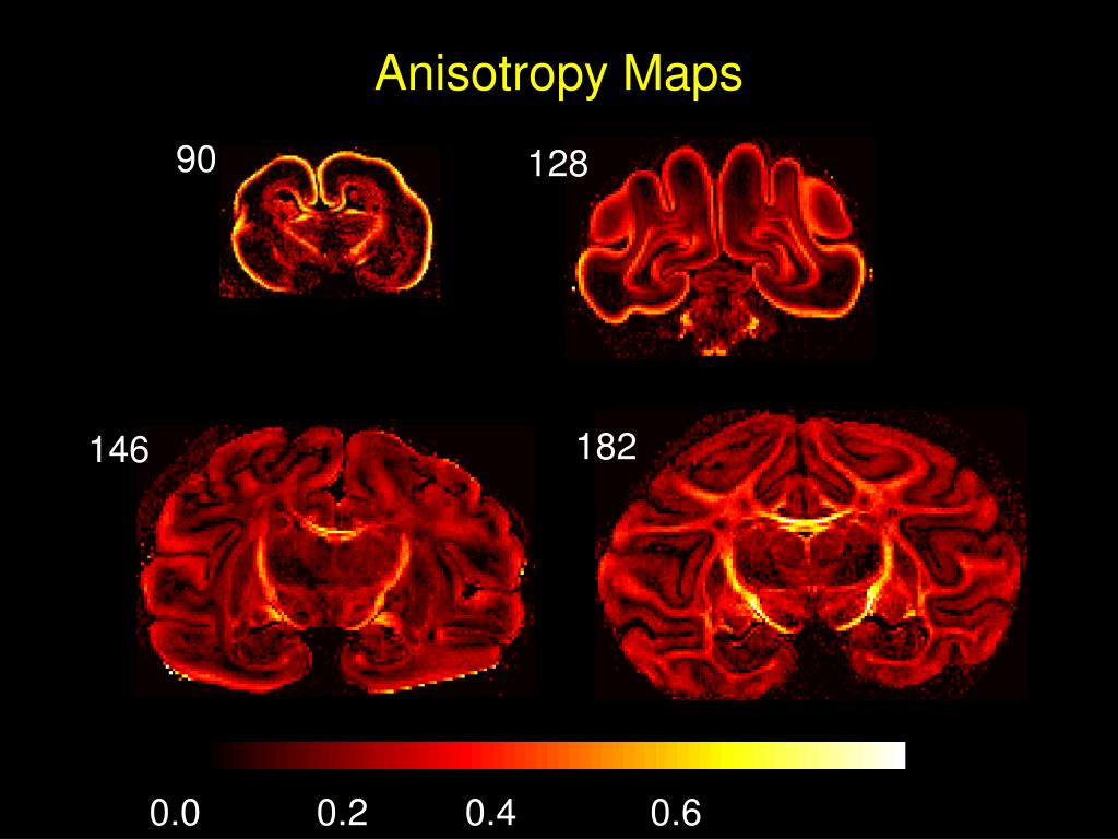 Anisotropy Maps
