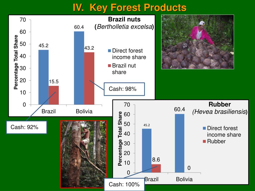 IV.  Key Forest Products