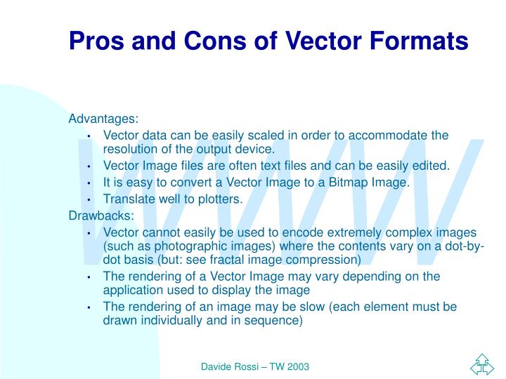 Pros and Cons of Vector Formats