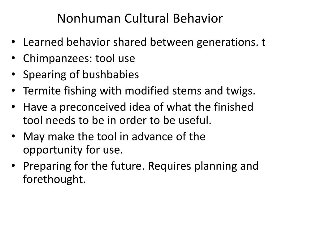 Nonhuman Cultural Behavior