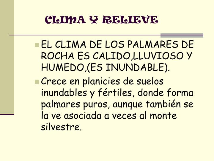 CLIMA Y RELIEVE