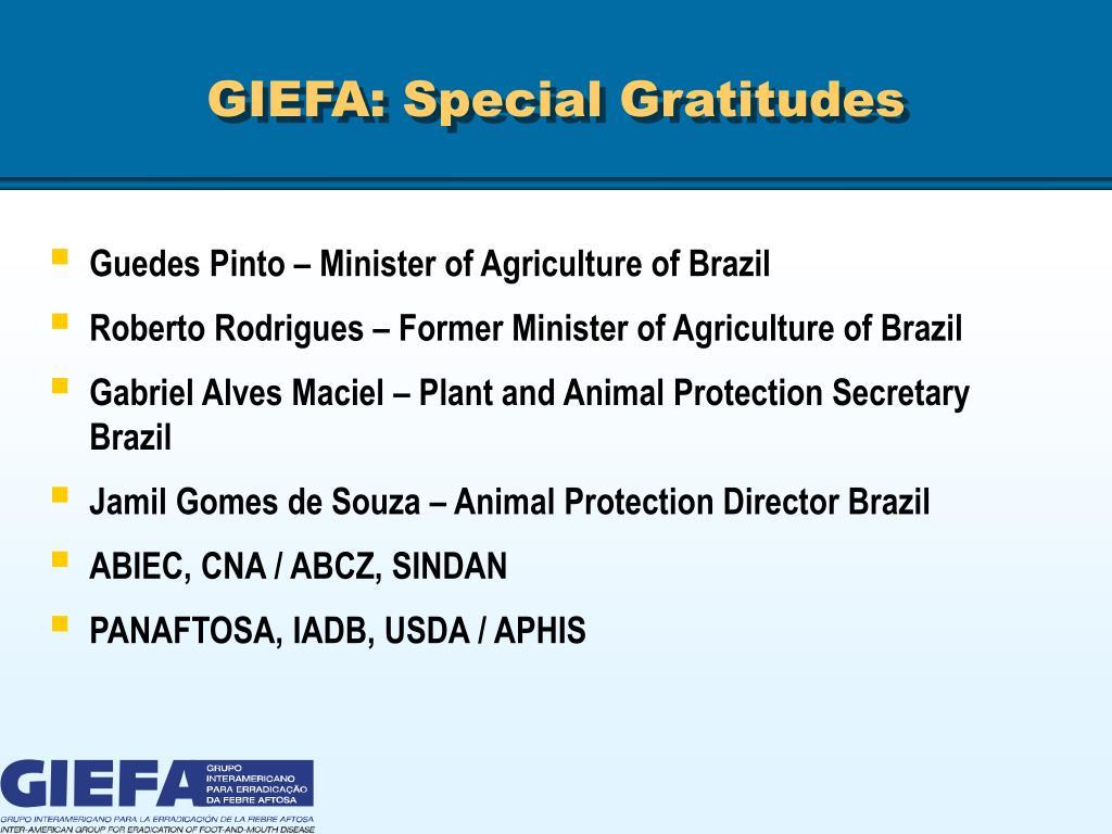 GIEFA: Special Gratitudes