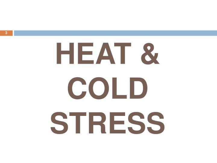 HEAT & COLD STRESS
