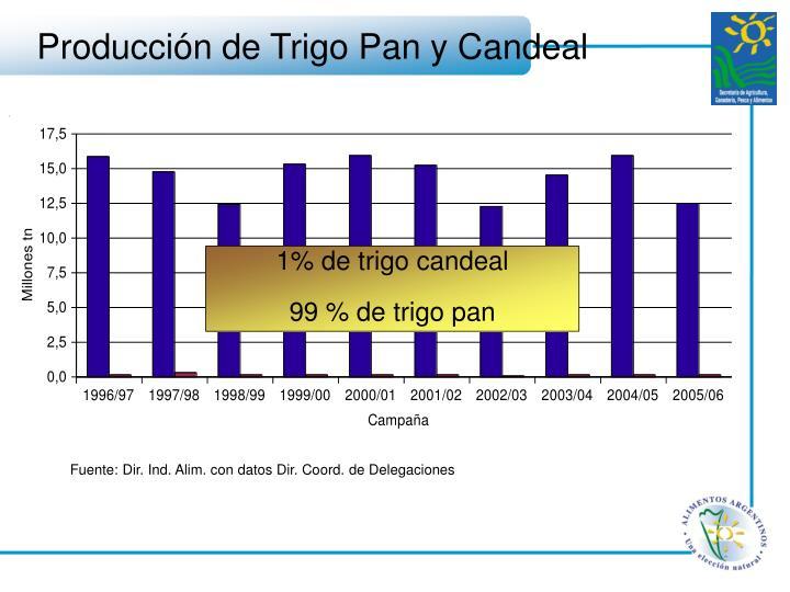 Producción de Trigo Pan y Candeal