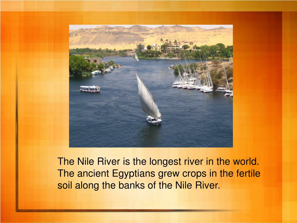 The Nile River is the longest river in the world.
