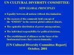 un cultural diversity committee new global principles