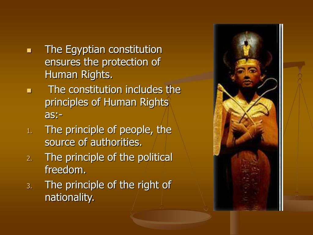 The Egyptian constitution ensures the protection of Human Rights.