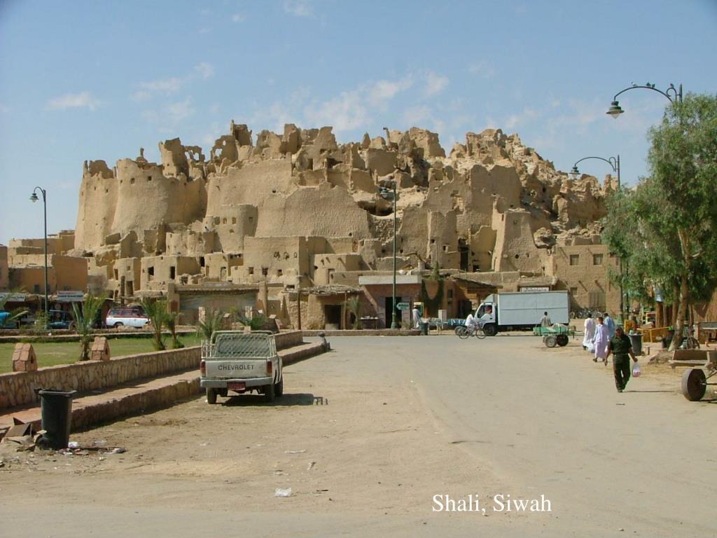 Shali, Siwah