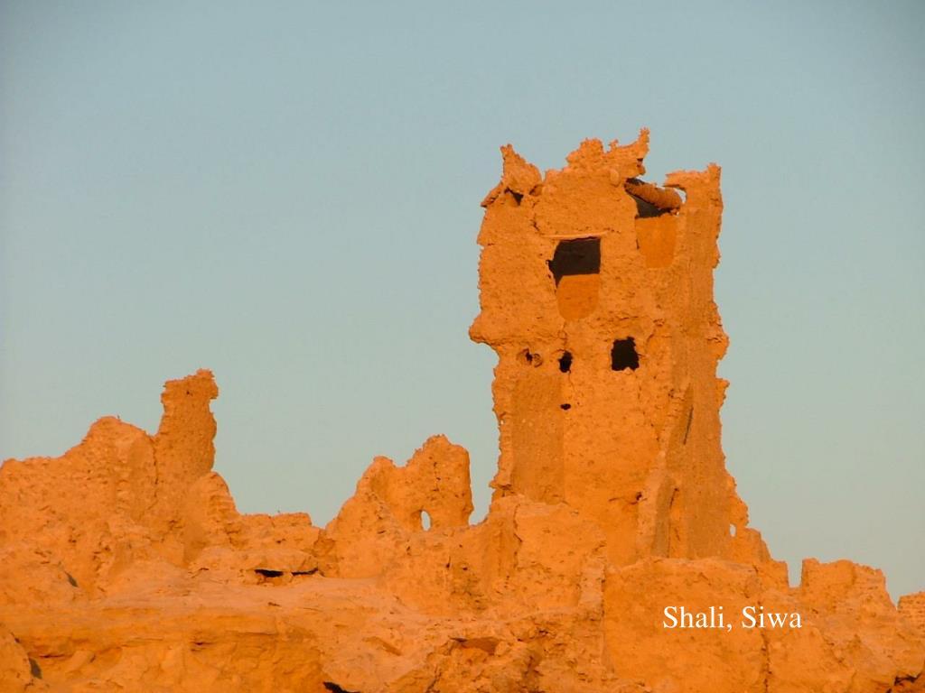 Shali, Siwa