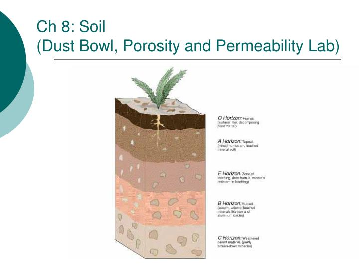 Ch 8: Soil
