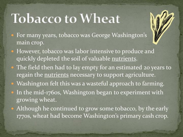 Tobacco to Wheat