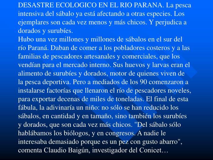 """DESASTRE ECOLOGICO EN EL RIO PARANA. La pesca intensiva del sábalo ya está afectando a otras especies. Los ejemplares son cada vez menos y más chicos. Y perjudica a dorados y surubíes.                                                                                                                                                        Hubo una vez millones y millones de sábalos en el sur del río Paraná. Daban de comer a los pobladores costeros y a las familias de pescadores artesanales y comerciales, que los vendían para el mercado interno. Sus huevos y larvas eran el alimento de surubíes y dorados, motor de quienes viven de la pesca deportiva. Pero a mediados de los 90 comenzaron a instalarse factorías que llenaron el río de pescadores noveles, para exportar decenas de miles de toneladas. El final de esta fábula, la adivinaría un niño: no sólo se han reducido los sábalos, en cantidad y en tamaño, sino también los surubíes y dorados, que son cada vez más chicos. """"Del sábalo sólo hablábamos los biólogos, y en congresos. A nadie le interesaba demasiado porque es un pez con gusto abarro"""", comenta Claudio Baigún, investigador del Conicet…"""