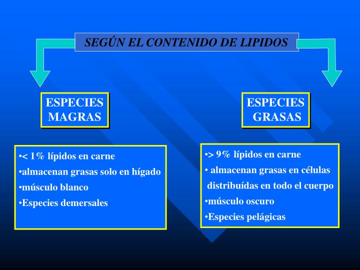 SEGÚN EL CONTENIDO DE LIPIDOS