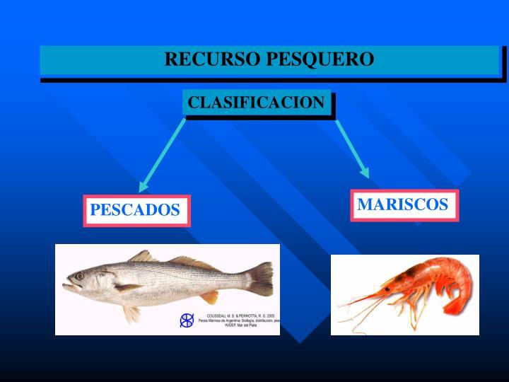 RECURSO PESQUERO