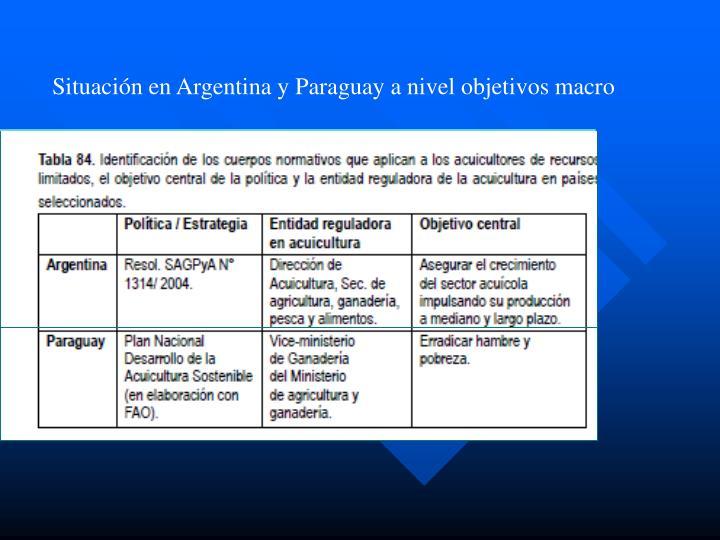 Situación en Argentina y Paraguay a nivel objetivos macro