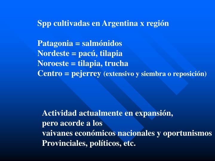 Spp cultivadas en Argentina x región