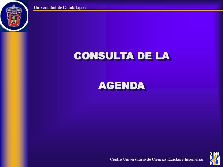 CONSULTA DE LA AGENDA