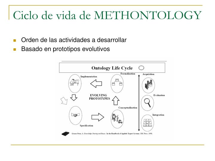 Ciclo de vida de METHONTOLOGY