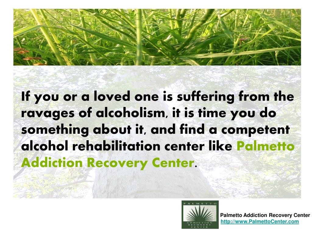 Palmetto Addiction Recovery Center
